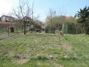 Ogród warzywny już po zmniejszeniu