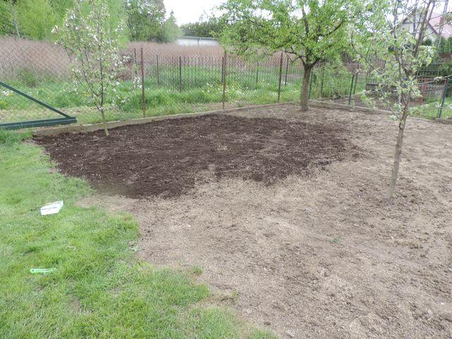 Posianą trawę przykrywamy warstwą ziemi