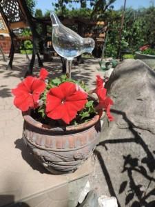 Ptaszek do podlewania kwiatka