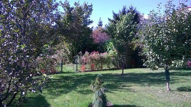 Dzień w ogrodzie był słoneczny i ciepły