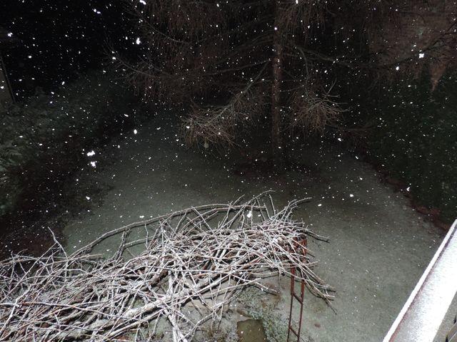 W ogrodzie zaczął padać śnieg