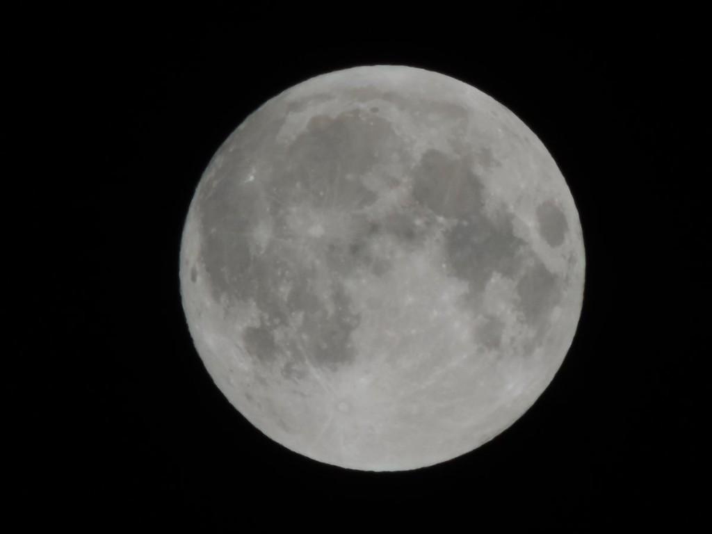 Księżyc w perygeum