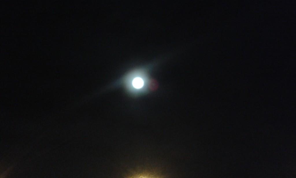 Księżyc nad ogrodem
