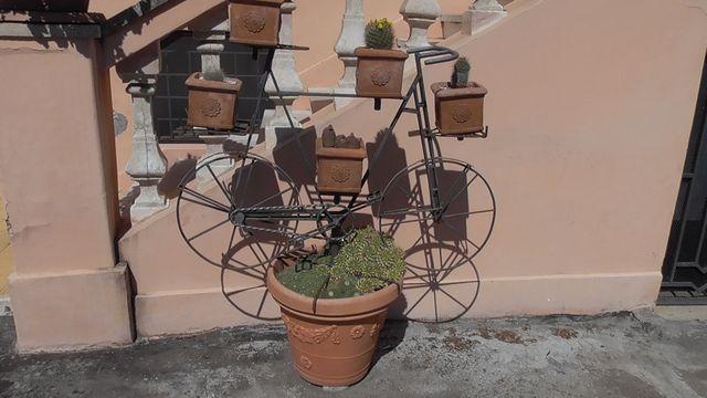 Rower doniczka