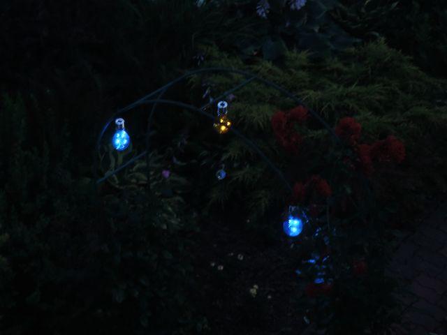 Żarówki w ogrodzie