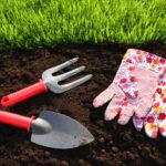 Dekoracja ogrodu krok po kroku