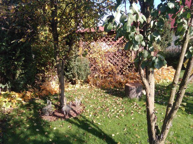 Jesienna altanka