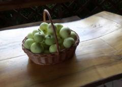 Deszcz i jabłka