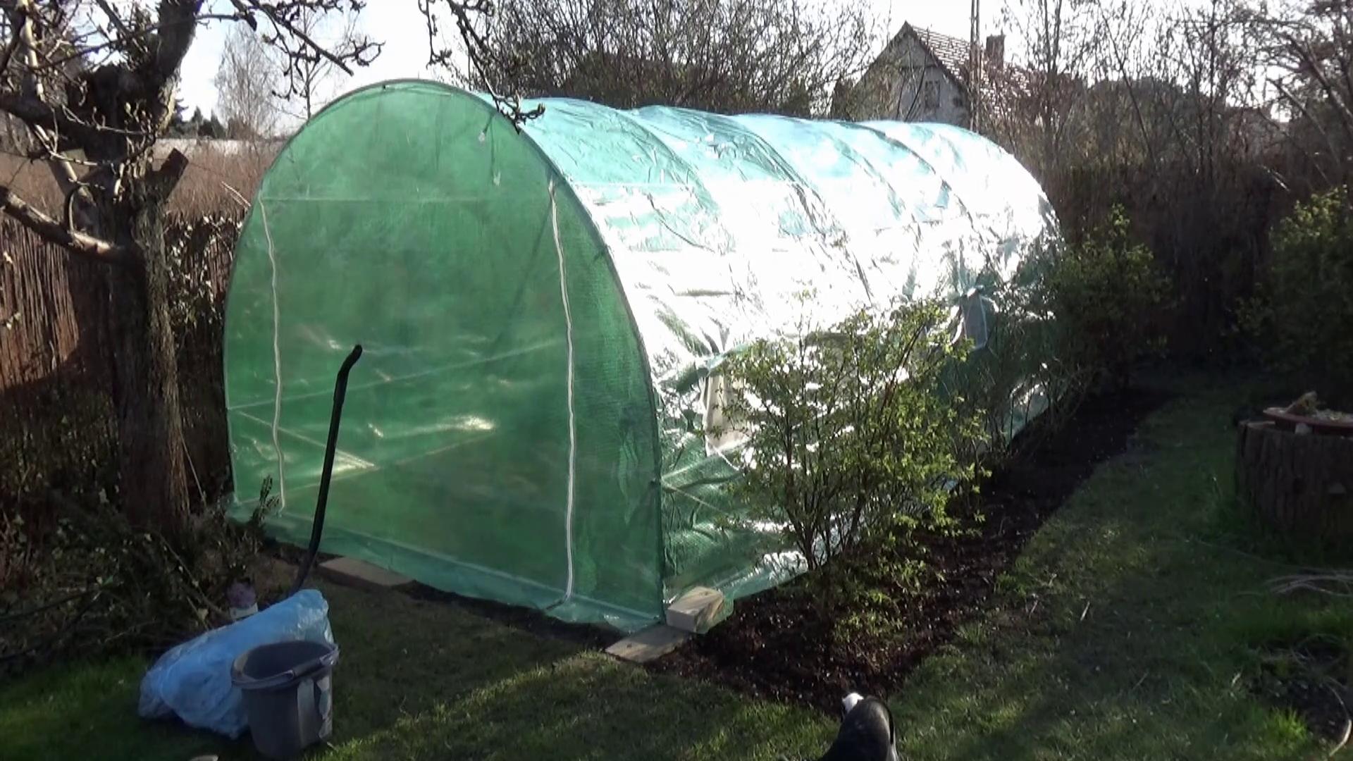 Tunel foliowy w ogrodzie warzywnym